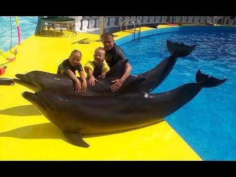 Семейное плавание с дельфинами в дельфинарии Витязево. Подводные съемки 2017.