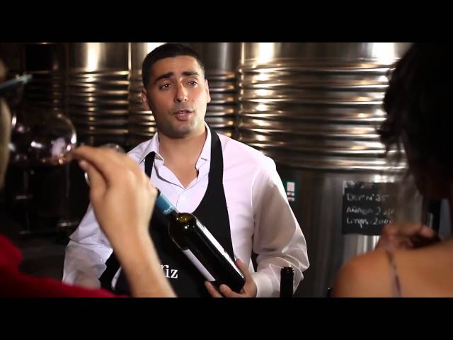 El vino que sabe a fiesta (III)