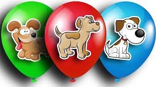 Шарики с сюрпризами. БАРБОСКИНЫ. Киндер Сюрприз. Color Balloons Compilation. Surprise Eggs