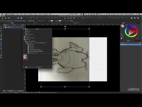 affinity-designer:-the-complete-guide-to-creating-vector-art-:-importing-your-sketch