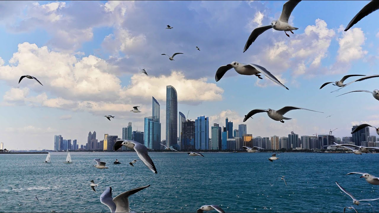 ABUDHABI is charming and Romantic. UAE capital beache and street