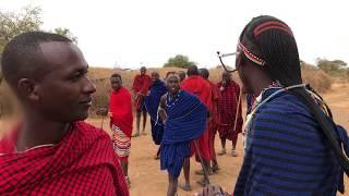 Wojownik masajski, który upolował lwa - okolice Amboseli - Kenia - Afryka