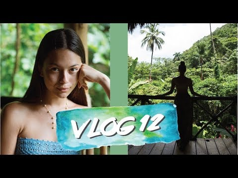 VLOG 12 | Dominican Republic - Day 5 & 6