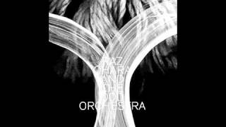 Raz Ohara - Raz Ohara And The Odd Orchestra II - Losing My Name