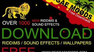 Version - Silent river riddim