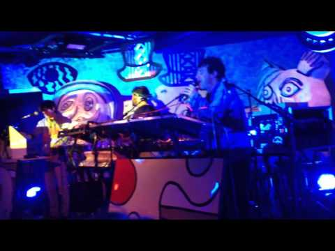 Animal Collective - Bees (3S Artspace, Portsmouth NH)