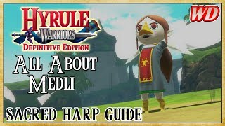 Video-Search for Medli