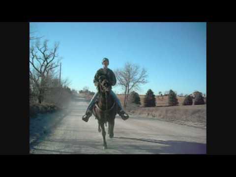 She's Country - Jason Aldean
