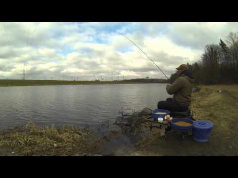 Ловля уклеи на фидер. Bleak feeder fishing.