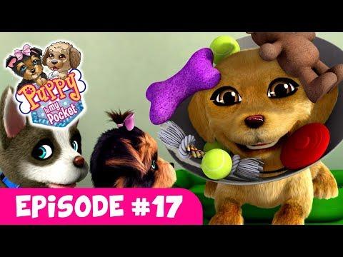 Puppy In My Pocket - Webisode #17