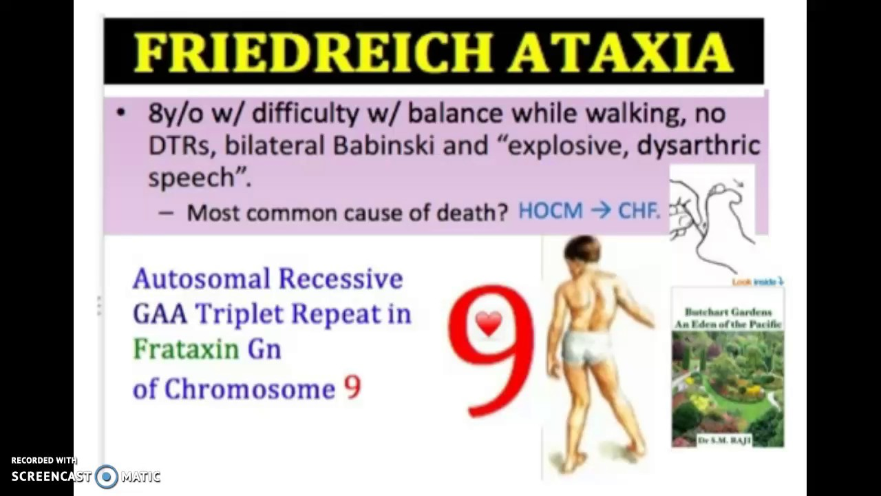 Friedreich Ataxia In 3 Minutes  Youtube. Kansas City Ford Dealerships. Blastoid Mantle Cell Lymphoma. Indianapolis Personal Injury Attorney. Dedicated Server Gaming What Is Undergraduate. Trade Show Displays Table Top. Personal Progressive Com It Talent Management. Life Insurance 1 Million Identity Theft Sites. Virginia Veterinary Surgical Associates