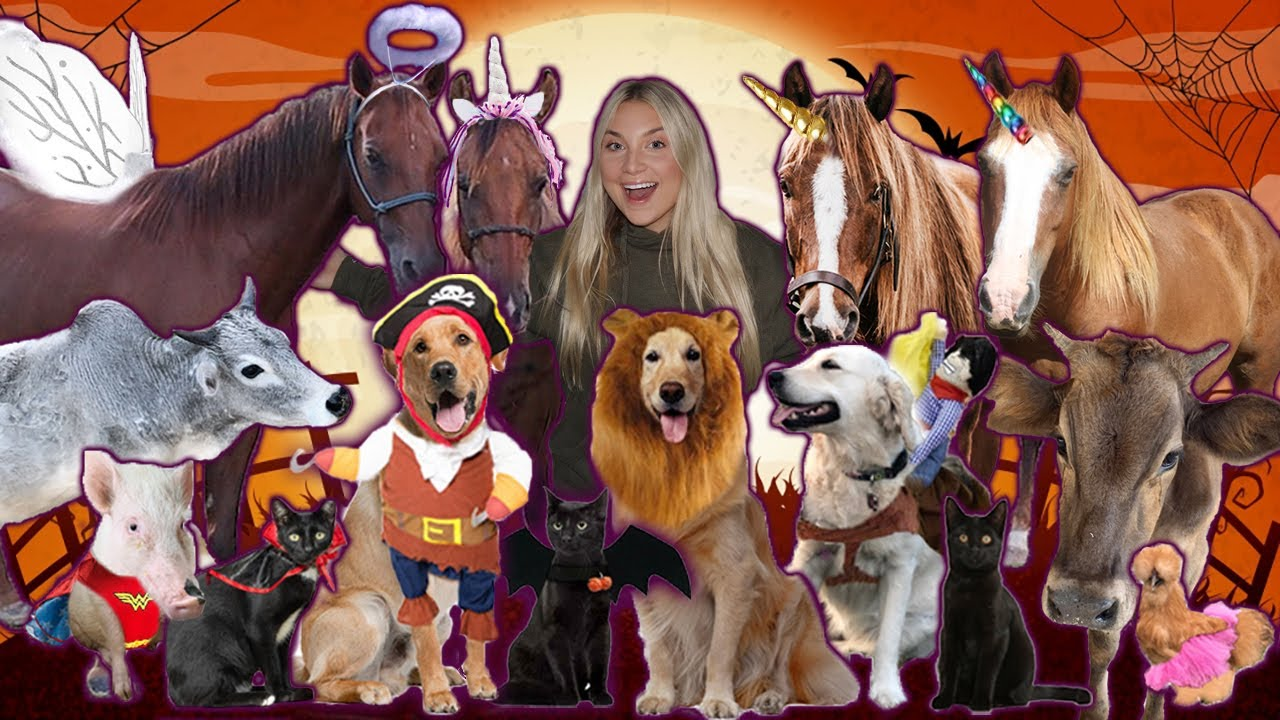 I Dressed Up ALL MY PETS For Halloween!
