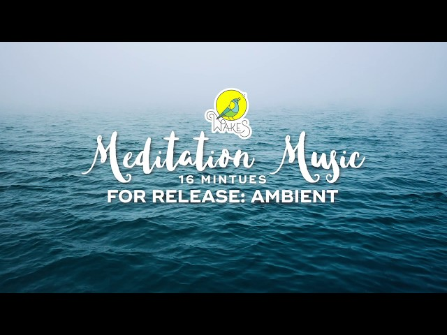 Meditation Music for Release: Ambient