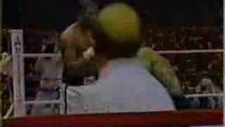20 Punch Combo, One Punch KO