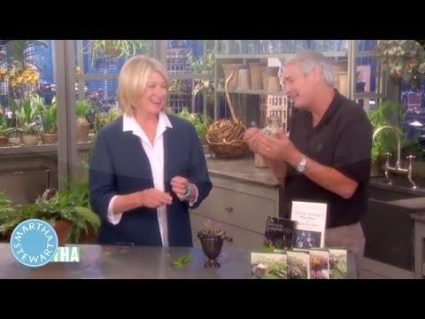Classroom Gardening Experiments - Martha Stewart
