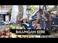 NDARBOY GENK - BALUNGAN KERE (REGGAE COVER MAS GIMBAL)