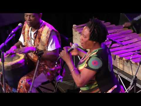 Kasai Allstars live at Grounds Rotterdam 2017