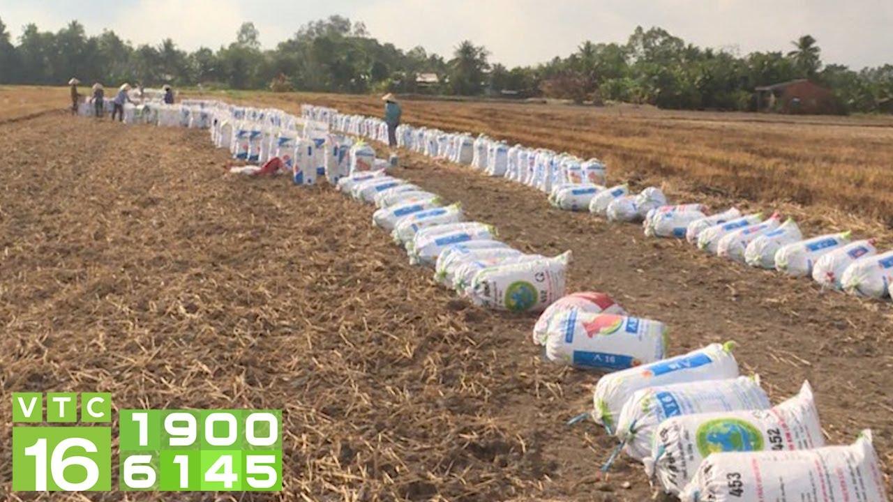 Nông dân Bạc Liêu thi nhau bán đất mặt ruộng | VTC16