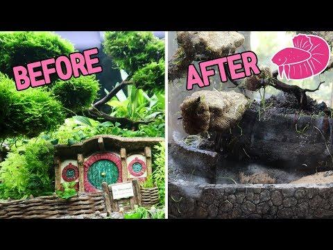 DESTRUCTION of the Hobbit Aquarium - Lord of the Rings Planted Tank Aquascape