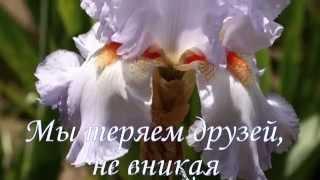 Мы теряем друзей...авт.ст.Петр Николаев.
