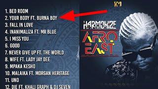 Huuapa Wimbo ulo Fanya Album YA hamonaiz YA Afro east kufutwa you tube