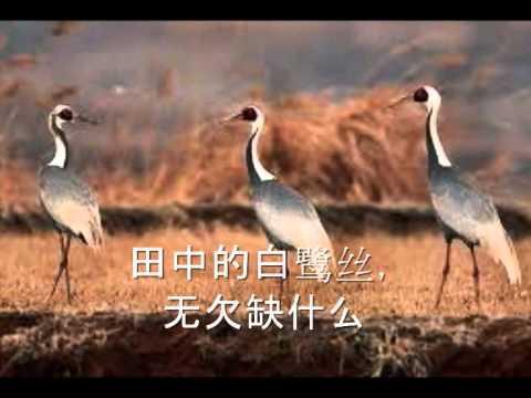 耶和华祝福满满 (Hokkien Christian Song with lyrics)