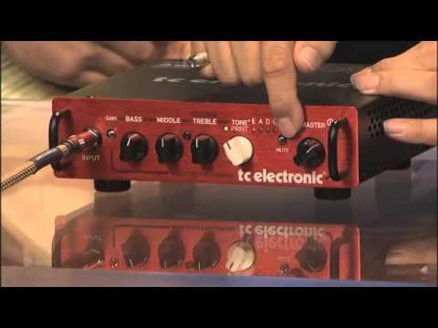 Rock & Review: BH250 Bass head