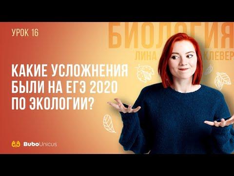 Усложнения на ЕГЭ 2020 по экологии | БИОЛОГИЯ ЕГЭ | Лина Клевер