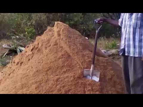 Building a House in Kenya 🇰🇪 East Africa Pt 18