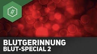Blutgerinnung - Blut-Special 2 ● Gehe auf SIMPLECLUB.DE/GO & werde #EinserSchüler