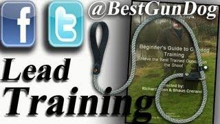 Gun Dog Lead Training From (www.bestgundog.com)