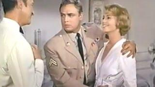 Marlon Brando, David Niven, Shirley Jones ,Comedy Movei 1964