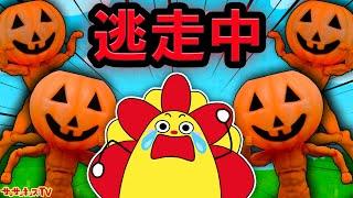 かぼちゃのお化けから逃走中!ハロウィン真夜中の鬼ごっこ!子供向け知育教育★サンサンキッズTV★