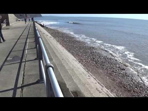 Beach, Charmouth, Dorset
