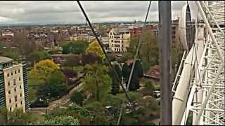 Laura rose on the york eye with vet nurses may 12 Thumbnail