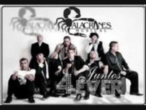 Alacranes Musical - Al Ritmo De La Lluvia