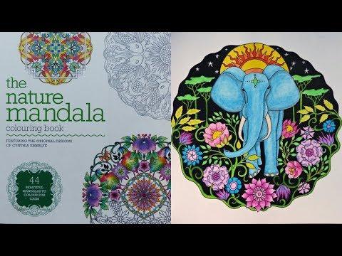 THE NATURE MANDALA Coloring Book Flip Through By Cynthia Emerlye