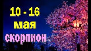 СКОРПИОН 🌍 неделя с 10 по 16 мая. Таро прогноз ...