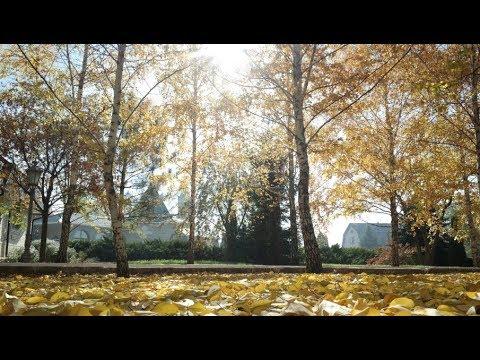 Лето Господне (№ 3). Октябрь. HD 1920 X 1080. Осень золотая. Никольское