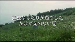ミュージシャン、作家、映画監督など多方面で活躍する辻仁成が、アント...