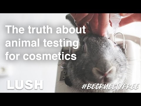 the-truth-about-animal-testing-for-cosmetics-#becrueltyfree