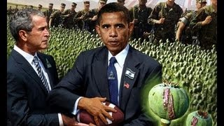 Afghanistan opium production hits new highs due to Obama policies
