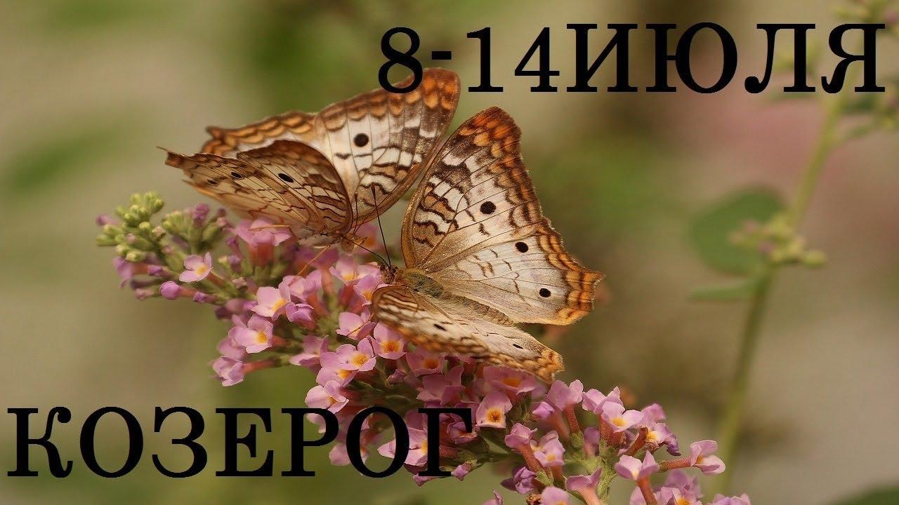 КОЗЕРОГ Таро прогноз 8-14 ИЮЛЯ Онлайн гадание