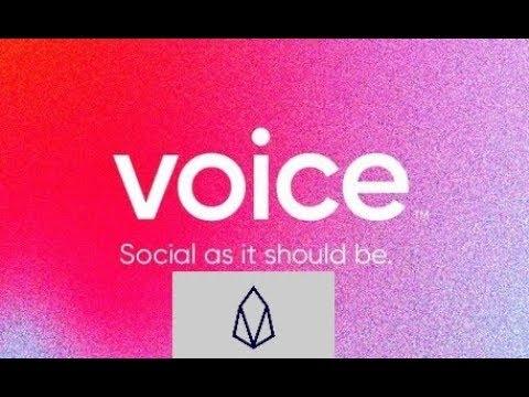 EOS Social Platform VOICE & EOSVM; Rich Keep Buying Bitcoin; 13% BTC Custody Service Surge