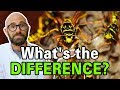 What is the Difference Between Bees, Wasps, and Hornets?