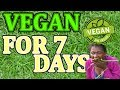 being vegan for 7 days because memes (FAIL) *GONE WRONG*