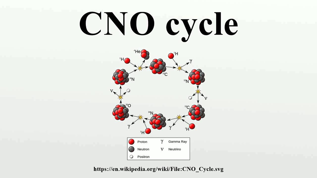 Image result for CNO Cycle