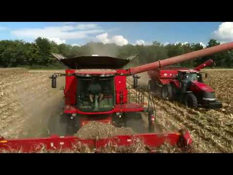 Fancy Farm Popcorn From Field To Bag