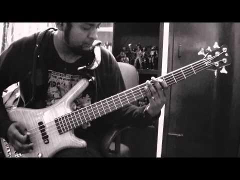 Tool - The Pot - bass tone test (Naresh Nathan) (Slain)
