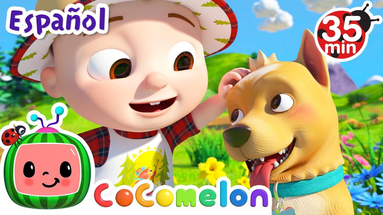 CoComelon en Español | Amo las montañas | Compilación de Canciones Infantiles y de Cuna